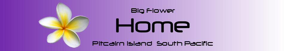 Pitcairn Island, Big Flower - Home